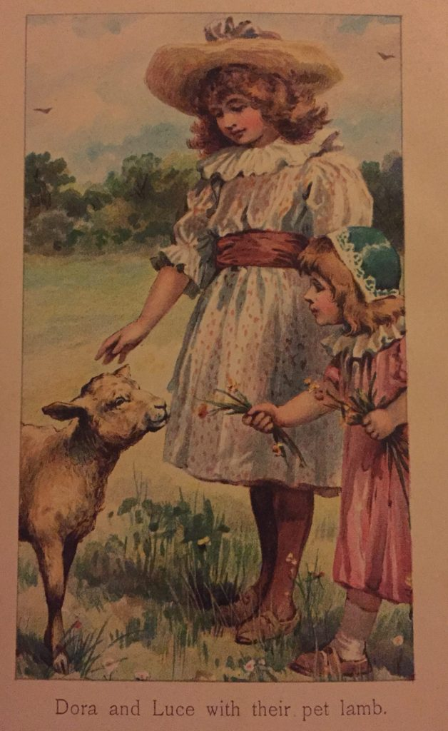 The colour frontispiece from the book