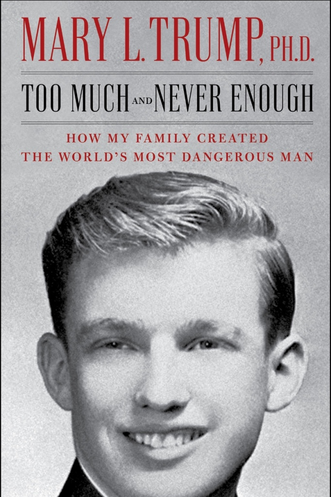 Cover of Too Much and Never Enough