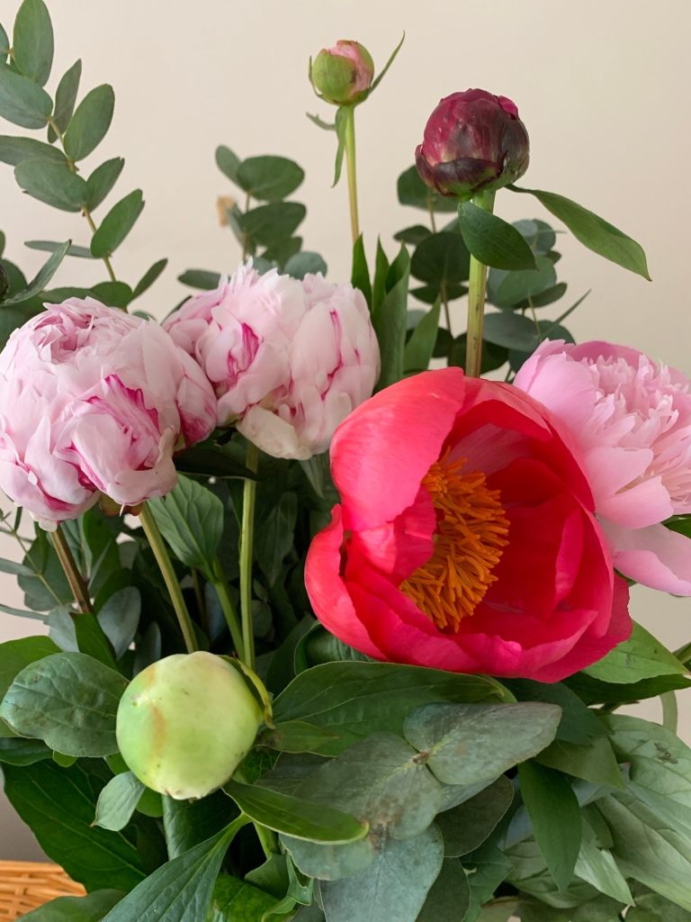 A vase full of Peonies in various shades of pink