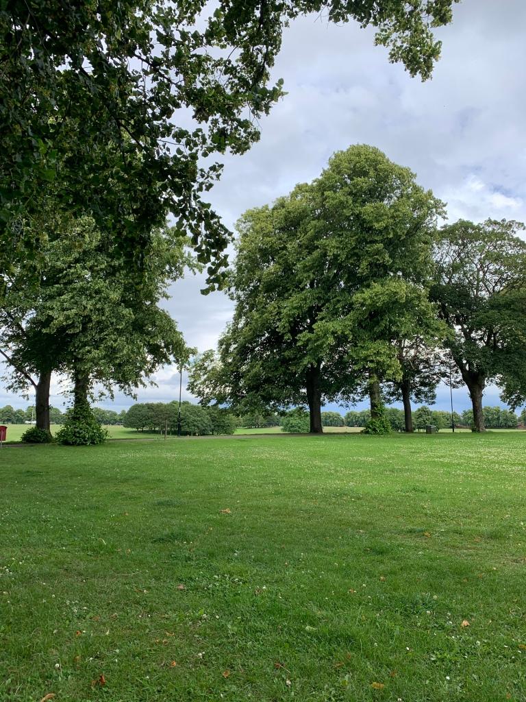 the park - again